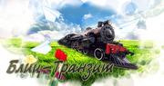 Транспортно- экспедиторская компания БЛИЦ -ТРАНЗИТ