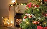 Дед Мороз и Снегурочка на дом за 300 грн