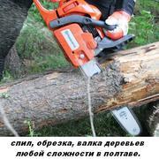 Спил, обрезка, валка деревьев.Услуги бензопилой.