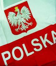 Бесплатная вакансия для каменщиков в Польше