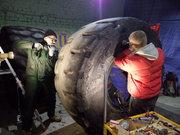 Ремонт крупногабаритных шин. Ремонт шин для сельхозтехники