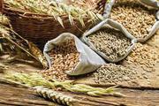 Куплю кукурудзу,  пшеницю всіх класів,  ячмінь,  жито,  овес. Зерновідходи